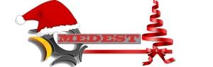 Logo MEDEST xmas