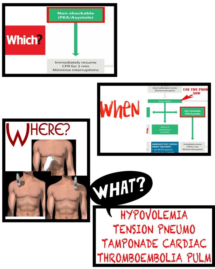 Infogram ECOALS