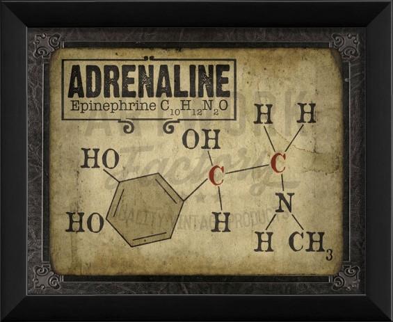 19489_eb_adrenaline_molecule